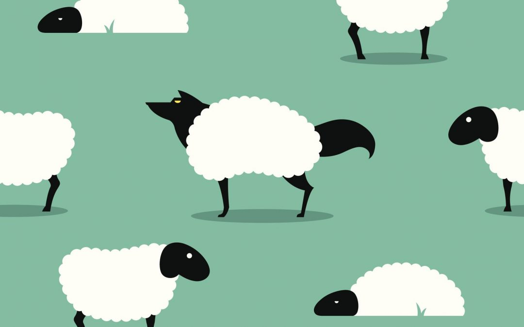 wolf in sheeps clothing to represent affiliate fraud